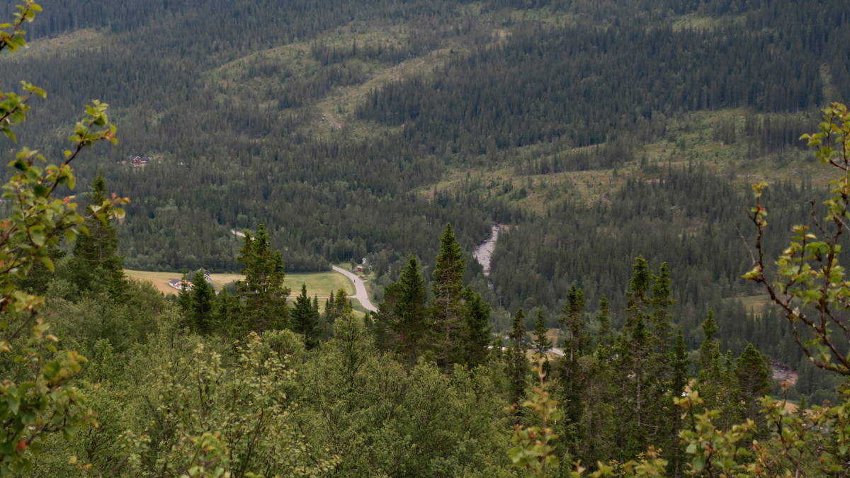Tessungdalen 7 17 (1)