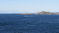 Lindesnes 10.08 04